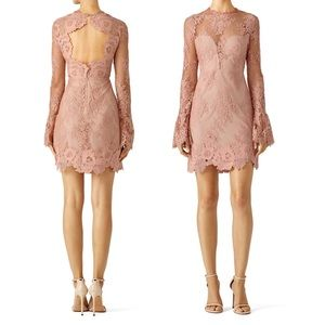 "Saylor Pink ""Leondra"" Lace Dress"
